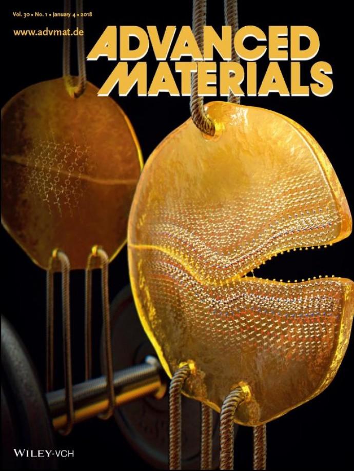 Advanced Materials 제공
